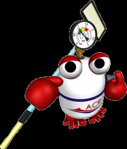 Mascota ACR Piscines